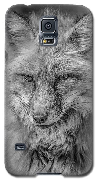 Striking A Pose Black And White Galaxy S5 Case