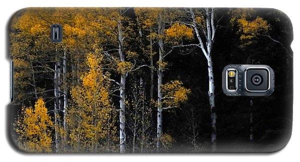 Striking Gold Galaxy S5 Case