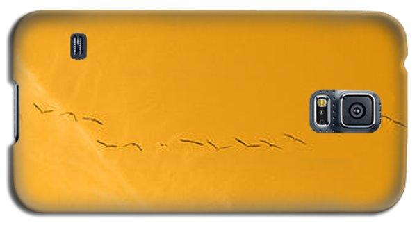 String Of Birds In Orange Galaxy S5 Case