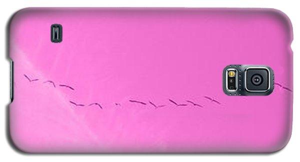 String Of Birds In Purple Galaxy S5 Case