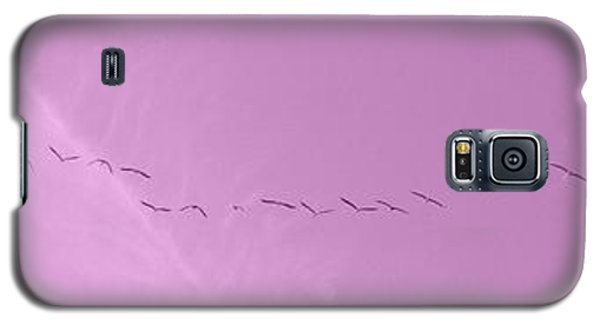 String Of Birds In Rose Pink Galaxy S5 Case
