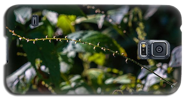Galaxy S5 Case featuring the photograph String Of Light by Edward Peterson