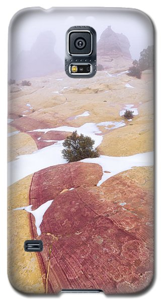Galaxy S5 Case featuring the photograph Stripe by Chad Dutson