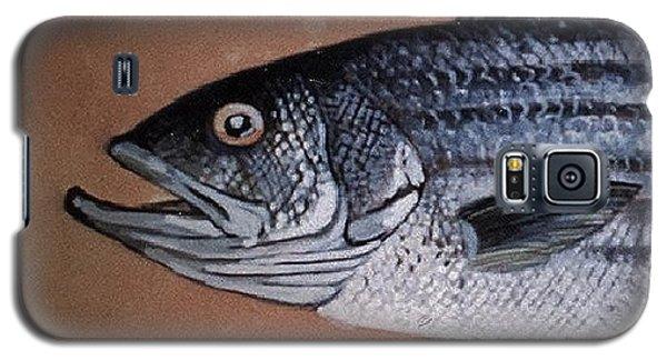 Striped Bass 1 Galaxy S5 Case by Andrew Drozdowicz