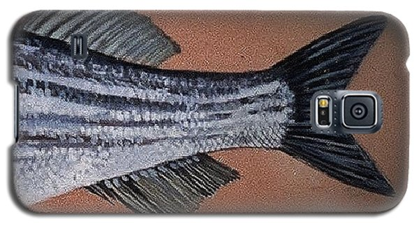 Galaxy S5 Case featuring the ceramic art Striped Bass by Andrew Drozdowicz
