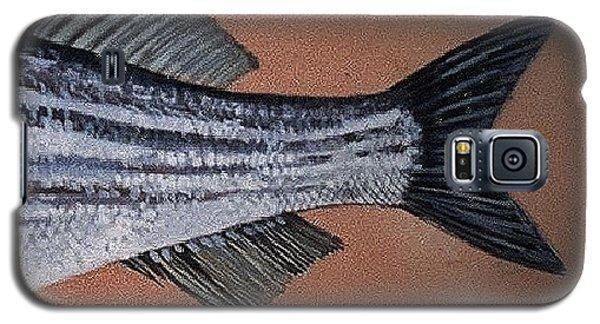 Striped Bass Galaxy S5 Case by Andrew Drozdowicz