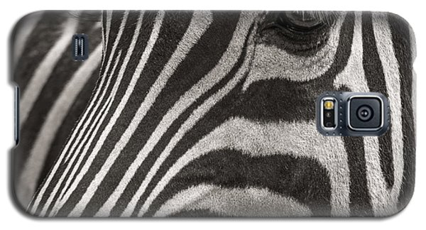 Striped Beauty Galaxy S5 Case