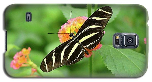 Striped Butterfly Galaxy S5 Case by Wendy McKennon