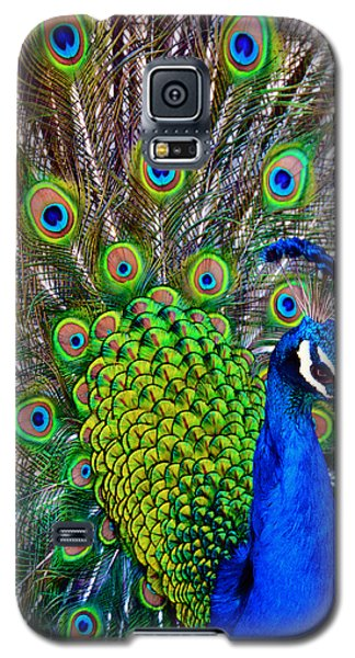 Strut Galaxy S5 Case by Angelina Vick