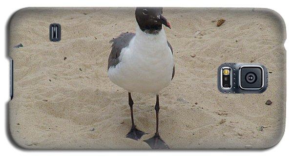 Struttin' Seagull  Galaxy S5 Case