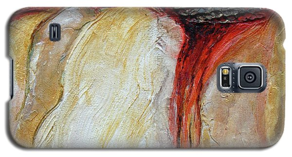 Stucco Canyon Galaxy S5 Case