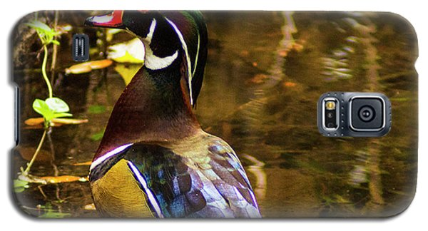 Stunning Wood Duck Galaxy S5 Case