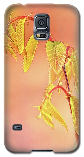 Stylized Baby Chestnut Leaves Galaxy S5 Case