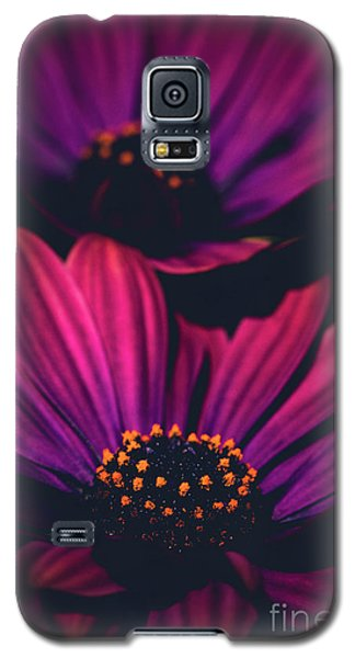 Galaxy S5 Case featuring the photograph Sublime by Sharon Mau