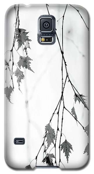 Galaxy S5 Case featuring the photograph Subtle by Rebecca Cozart