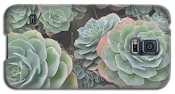 Succulent 2 Galaxy S5 Case