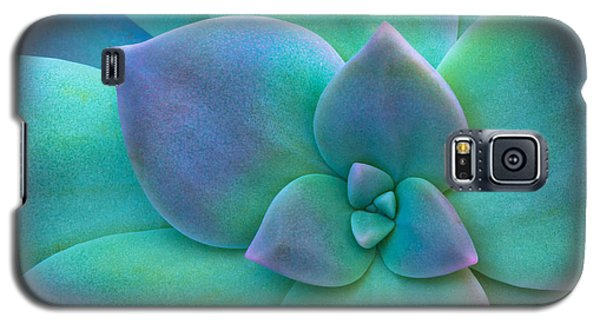Succulent Galaxy S5 Case