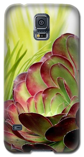 Succulent Galaxy S5 Case
