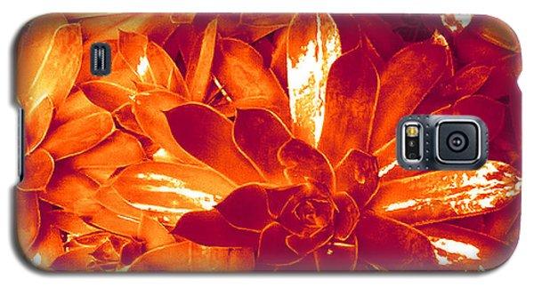 Succulents #1 Galaxy S5 Case