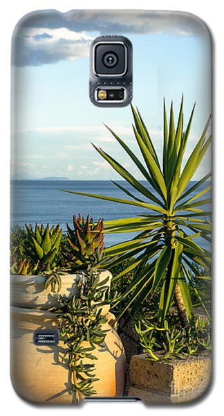 Succulents By The Sea Galaxy S5 Case