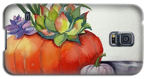 Succulents In Pumpkin Galaxy S5 Case