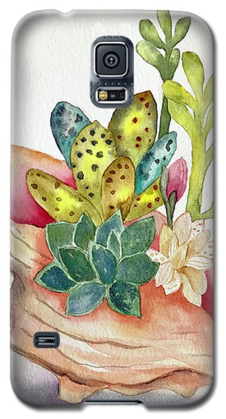 Succulents In Shell Galaxy S5 Case