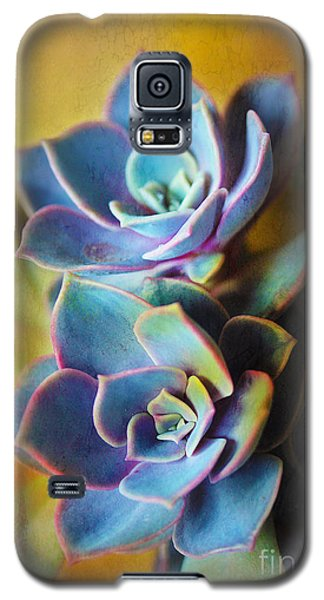 Succulents Galaxy S5 Case