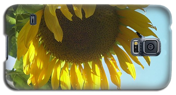 Galaxy S5 Case featuring the painting Such A Big Beauty by Martha Ayotte