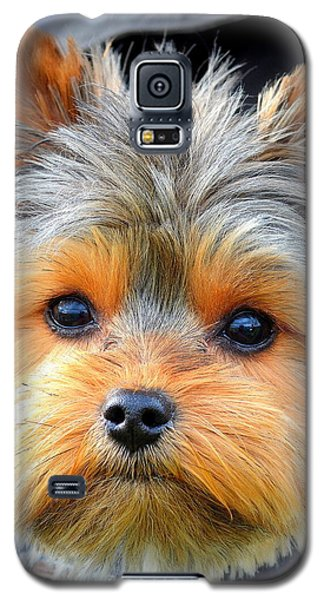 Such A Face Galaxy S5 Case