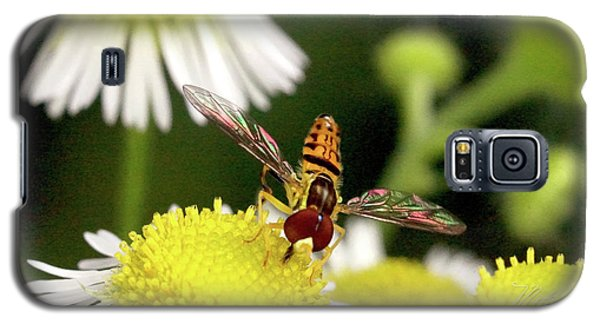 Galaxy S5 Case featuring the photograph Sugar Bee Wings by Meta Gatschenberger