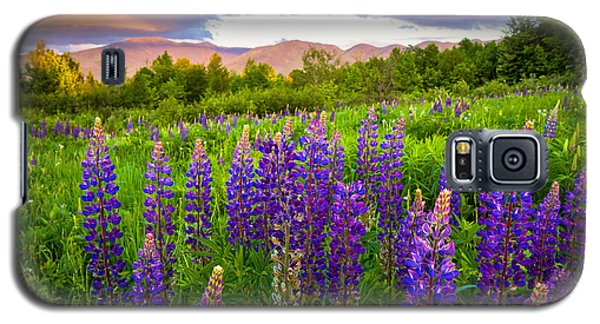Sugar Hill Lupines Galaxy S5 Case