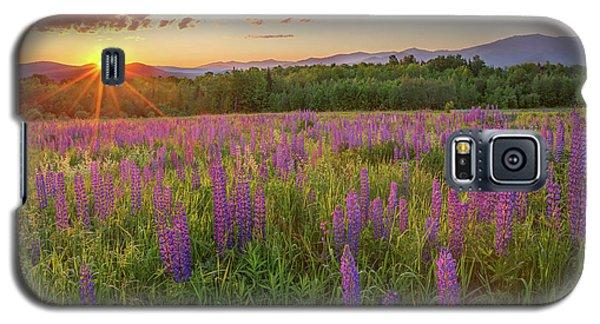 Sugar Hill New Hampshire Lupine Galaxy S5 Case