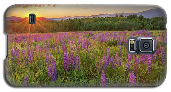 Sugar Hill New Hampshire Lupine Galaxy S5 Case