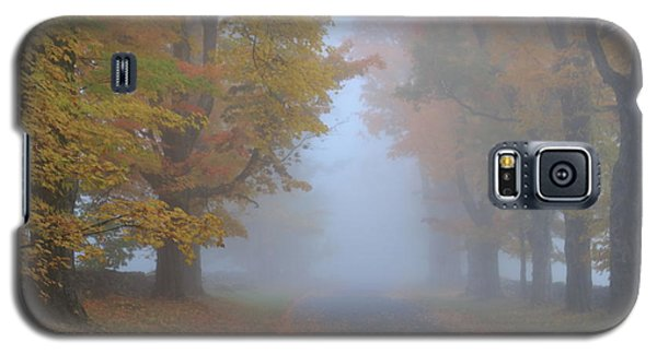 Sugar Maples On A Misty Country Road Galaxy S5 Case by John Burk
