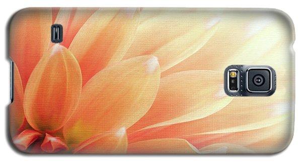 Sugar N Spice  Galaxy S5 Case