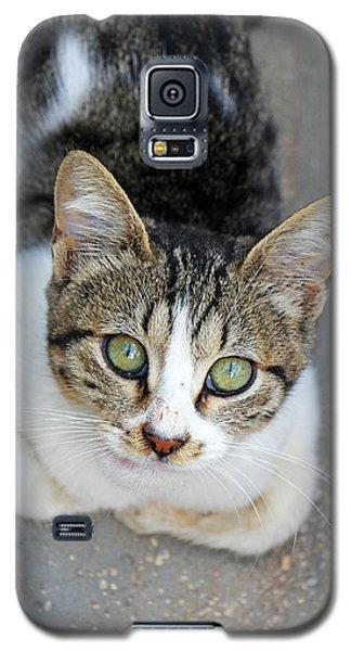 Galaxy S5 Case featuring the photograph Suma by Munir Alawi