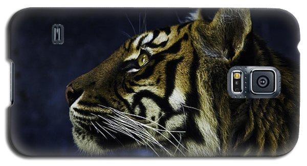 Sumatran Tiger Profile Galaxy S5 Case by Avalon Fine Art Photography