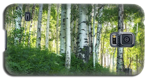 Galaxy S5 Case featuring the photograph Summer Aspen Forest by Tim Reaves