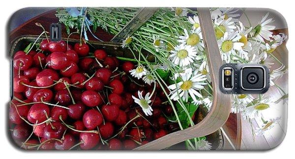 Summer Basket Galaxy S5 Case