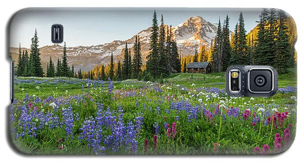 Summer Beauty At Indian Henry's Hunting Ground Galaxy S5 Case