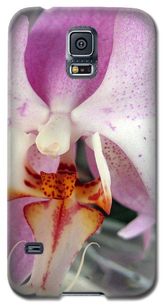 Galaxy S5 Case featuring the photograph Summer Bloom by Joan  Minchak