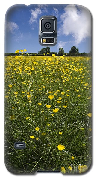 Summer Buttercups Galaxy S5 Case