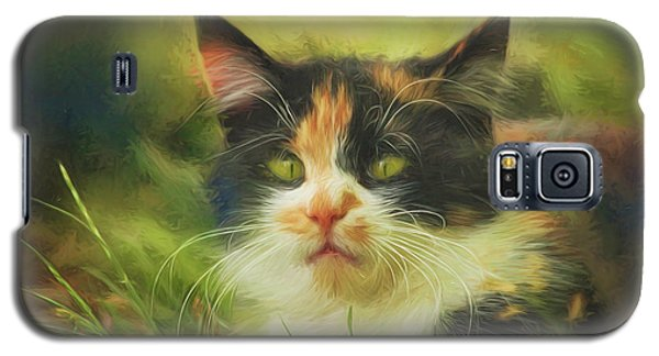 Galaxy S5 Case featuring the photograph Summer Cat by Jutta Maria Pusl