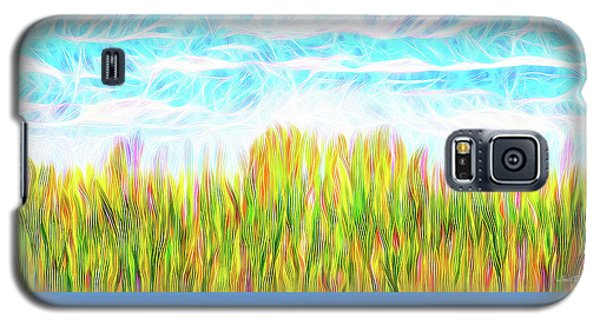 Summer Clouds Streaming Galaxy S5 Case by Joel Bruce Wallach