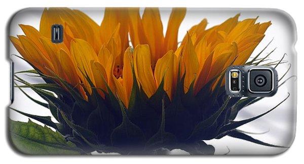 Summer Delight Galaxy S5 Case
