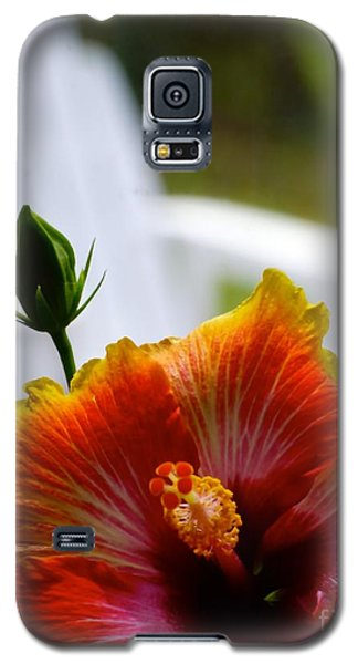 Summer Dreams Galaxy S5 Case