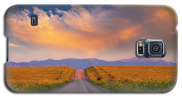 Galaxy S5 Case featuring the photograph Summer Fantastic by Tim Reaves