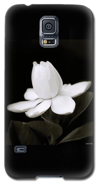 Summer Fragrance Galaxy S5 Case