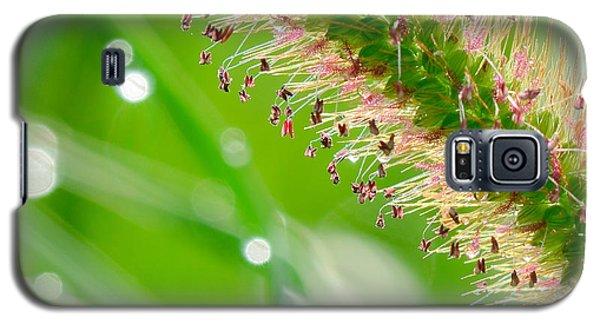 Summer Grass Galaxy S5 Case