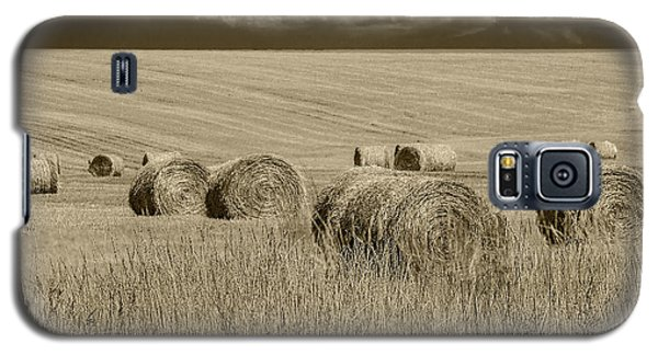 Summer Harvest Field With Hay Bales In Sepia Galaxy S5 Case